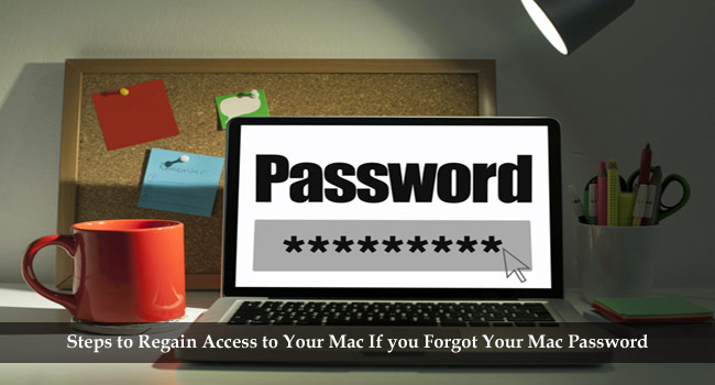 What to Do if You Forgot Mac Password