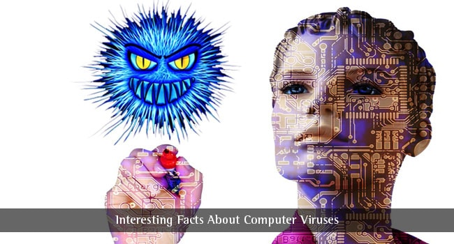 Computer Virus Facts – Find for Fun Virus Computer Facts