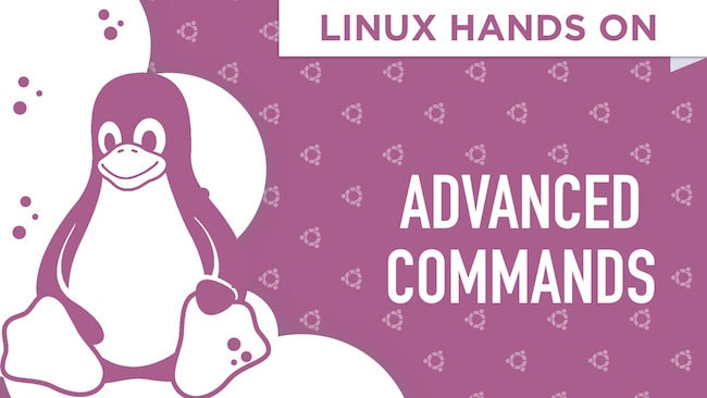 Linux Hands On: The Advanced Terminal Commands