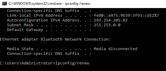ipconfig/renew Command
