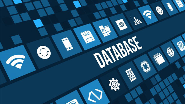 What is the Role of a Database Developer?